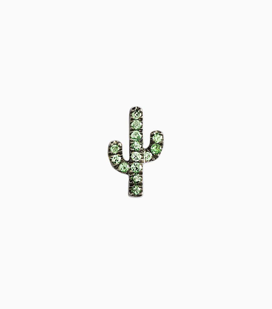 Cactus - Fiesta